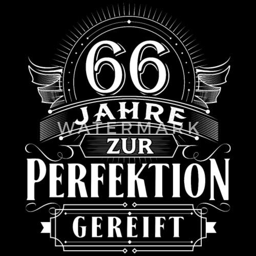 66 Jahre Geburtstag Geburt Geboren Perfektion Männer Bio T Shirt