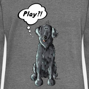 Flat Coated Retriever Play