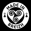 MADE IN BREIZH - T-shirt Homme