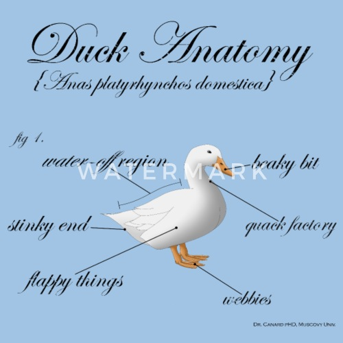 Duck Anatomy By Roys Tone Spreadshirt
