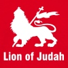 Lion of Judah - T-shirt Homme