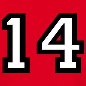 The number 14 - number fourteen