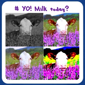 # Yo! Milk Today? - T-skjorte for barn