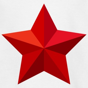 Red Star Red Star Christmas Crest Flag