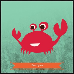 Crab Brachyura - Kids' T-Shirt