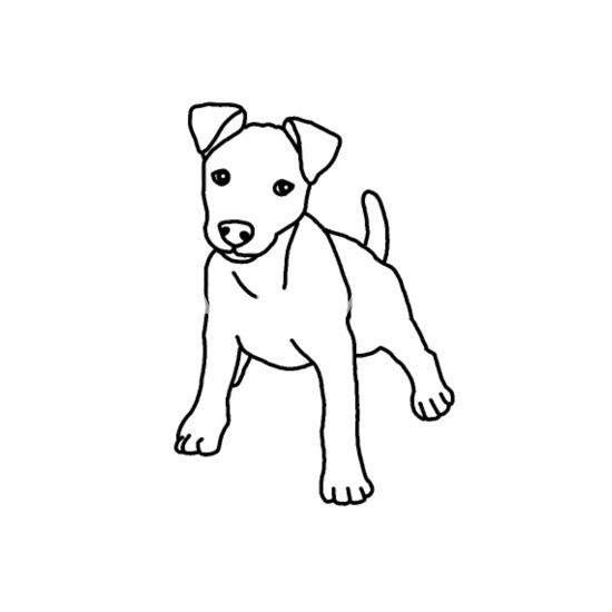 Jack Russell Terrier Chiot Chien Dessin Gourde Spreadshirt