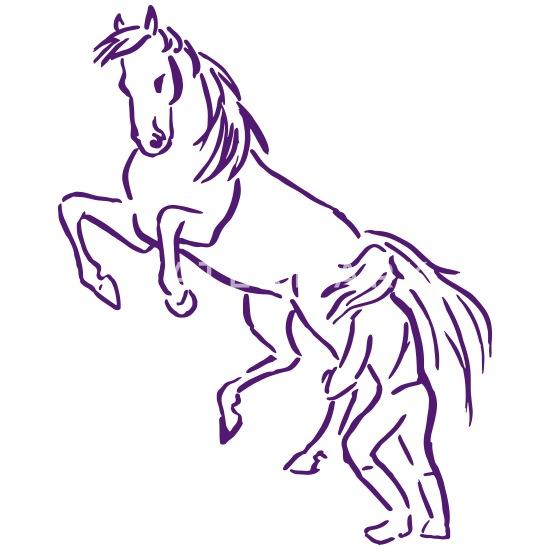 39 steigendes pferd zeichnung  besten bilder von ausmalbilder