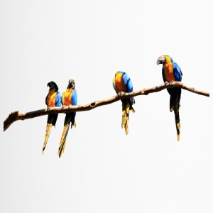 parrots papagei birds voegel vogel - Thermobecher