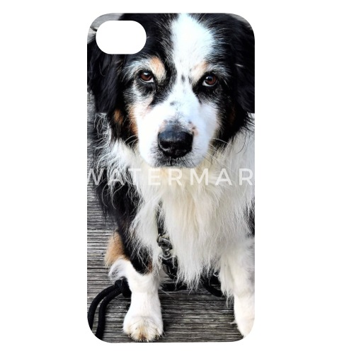 Schöner Schwarz Weißer Hund Iphone 4 4s Hülle Spreadshirt