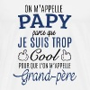 Papy cool - T-shirt Premium Homme