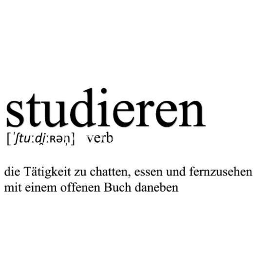 Studieren Definition