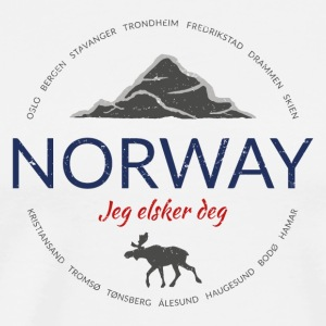 Norway grunge button