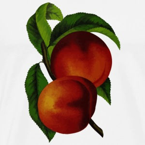 Nectarines pêche pêches nectarines fruits obst8 - T-shirt Premium Homme