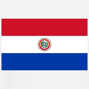 National Flag Of Paraguay - Premium-T-shirt herr