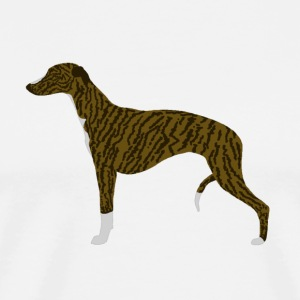 Whippet (brindle)