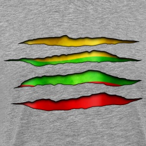 Lithuania Torn out 003 AllroundDesigns - Men's Premium T-Shirt