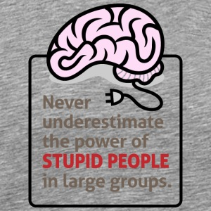 Never Underestimate The Power Of Stupid People. - Men's Premium T-Shirt