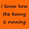 Denglisch - I know how the  bunny is running - Männer Premium T-Shirt
