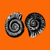 Ammonite 69 - Men's Premium T-Shirt