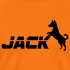 Chien / Jack Russell Jack