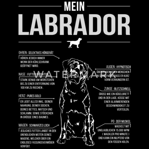 LABRADOR ANATOMIE von Wilsigns Graphics | Spreadshirt