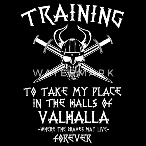 training for valhalla by spreadshirt