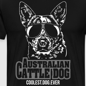 AUSTRALIAN CATTLE DOG coolest dog ever - Men's Premium T-Shirt