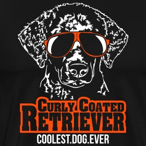 Curly Coated Retriever kuleste hund - Premium T-skjorte for menn