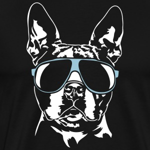 BOSTON TERRIER sval - Premium-T-shirt herr