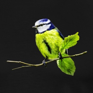 Blue Tit - Men's Premium T-Shirt