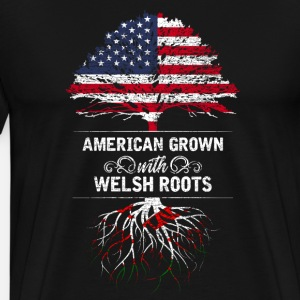 America Wales flag origin birth