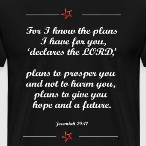 For I know the plan I have for you shirt - Men's Premium T-Shirt