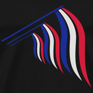 3 flags hanging flagpole 3 colors France nation bl