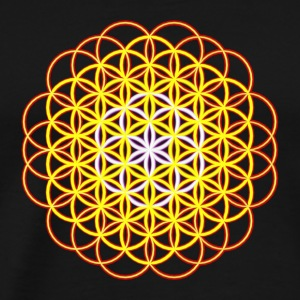 Flower of Life - Flower of Life - Premium T-skjorte for menn