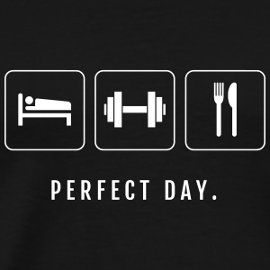 Perfect Day (Sleep, Train, Eat) - Men's Premium T-Shirt