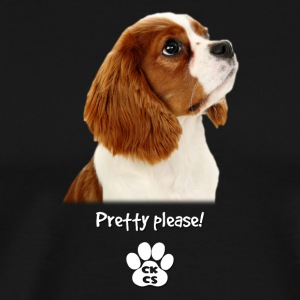 Pretty please - Men's Premium T-Shirt
