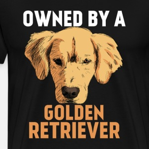 International Dog Day - Golden Retrievers