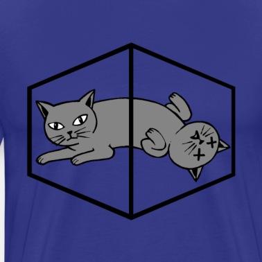 Katze Physik