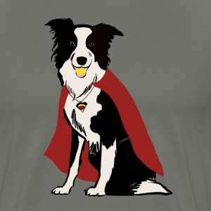 Flyball Border Collie Superchien