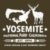 Parc national de Yosemite en Californie Ours Redwood - T-shirt Premium Homme