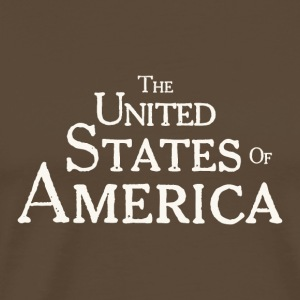 United States of America Vintage Typography - Men's Premium T-Shirt