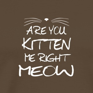 Are you Kitten me right Meow Kidding me now Katze - Männer Premium T-Shirt