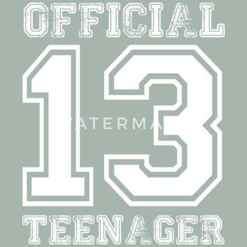 Official Teenager 13 Geburtstag Geschenk Von Awesome Teesign