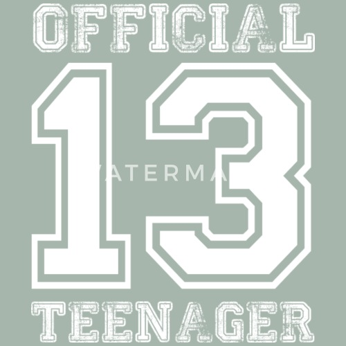 Official Teenager 13th Birthday Gift By Awesome Teesign