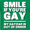 Smile If You're Gay, My Gaydar Is Out of Order - Men's Premium T-Shirt