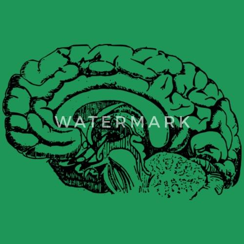 Gehirn Anatomie von EigenbroetlerDesigns | Spreadshirt