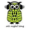 coole Eule Kopfhörer Owl Headphones all night long - Frauen Premium T-Shirt