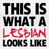 This Is What a Lesbian Looks Like - Women's Premium T-Shirt