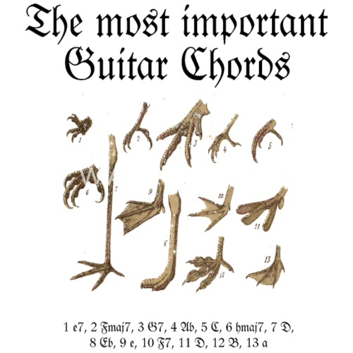 The Most Important Guitar Chords By Theshirtshops Spreadshirt