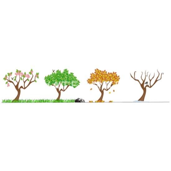 seasons jahreszeiten vier jahreszeiten baum natur frauen